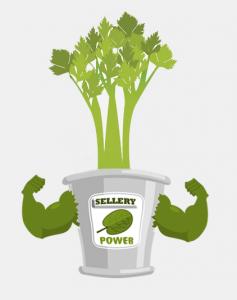 Sellery Power