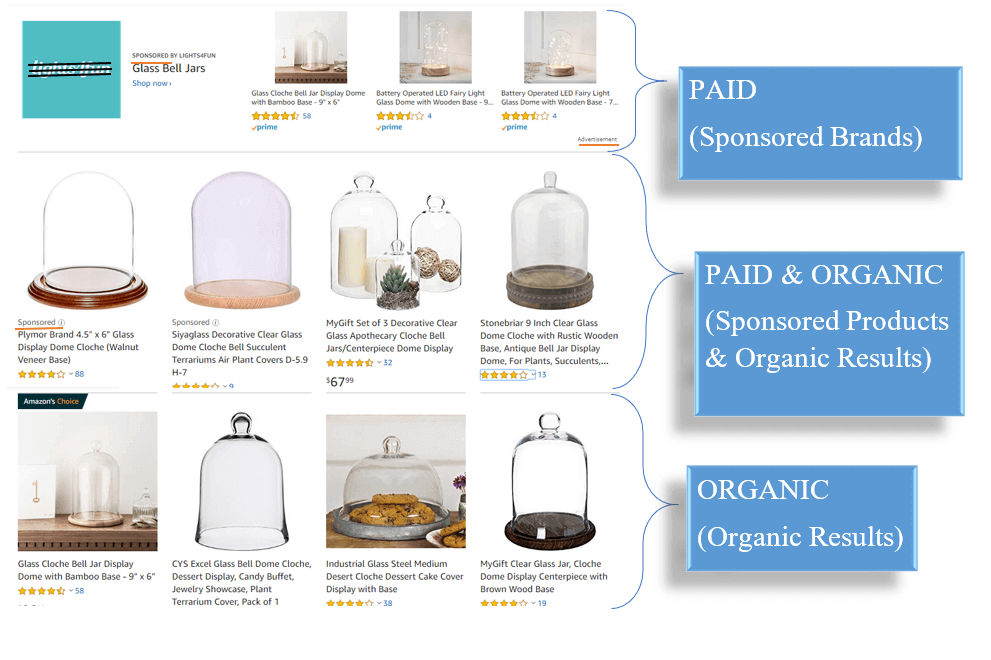 Organic vs Paid
